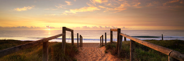 Narrabeen Beach SYD1282