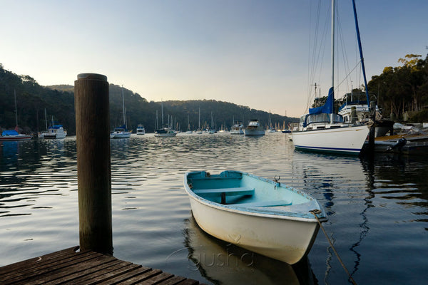 Photo of Pittwater SYD1283 - Gusha