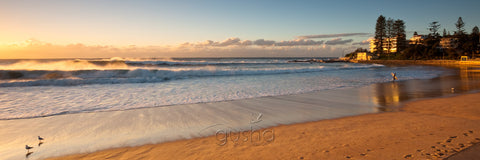 A photo of Dee Why Beach at sunrise.