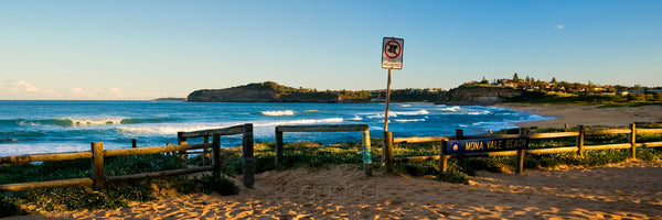 Photo of Mona Vale Beach SYD1337 - Gusha