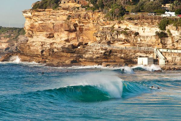 Photo of Bronte SYD1398 - Gusha