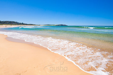 Photo of Long Reef Beach SYD2052 - Gusha