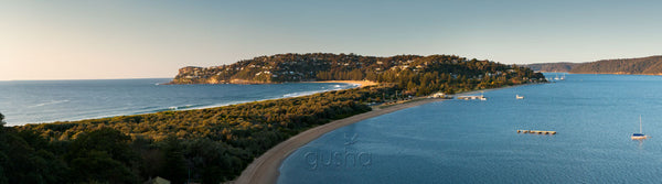 Photo of Palm Beach SYD2058 - Gusha