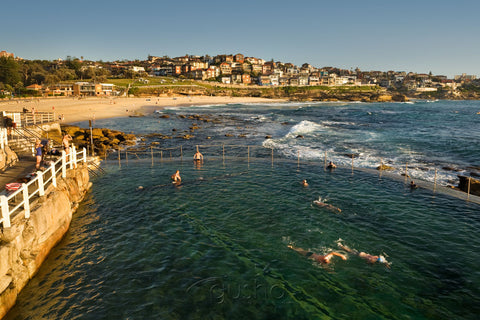 Photo of Bronte SYD2116 - Gusha