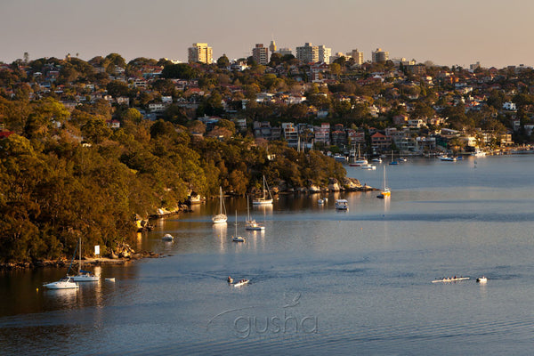 Photo of Beauty Point SYD2223 - Gusha