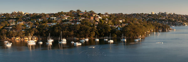 Photo of Beauty Point SYD2236 - Gusha