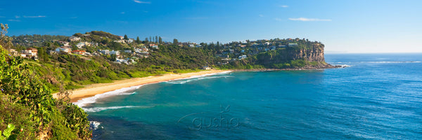 Photo of Bungan Beach SYD2620 - Gusha
