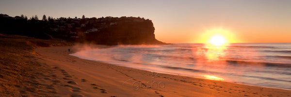 Photo of Bungan Beach SYD2621 - Gusha