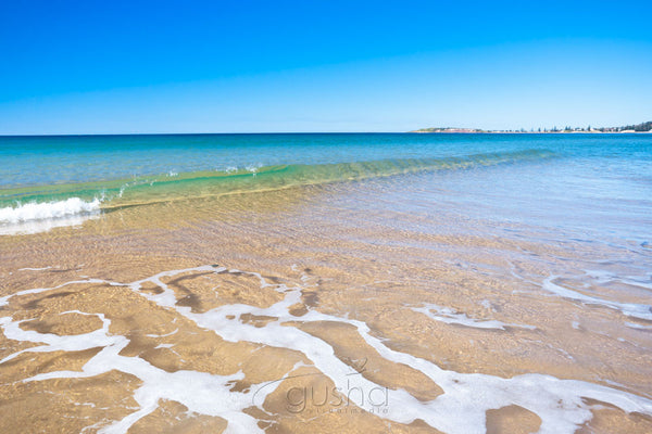 Photo of Narrabeen Beach SYD2644 - Gusha