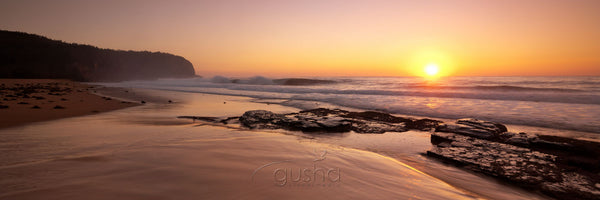 Photo of Turimetta Beach SYD2645 - Gusha