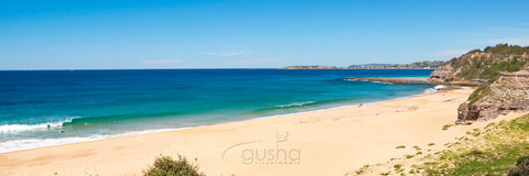 Photo of Turimetta Beach SYD2646 - Gusha