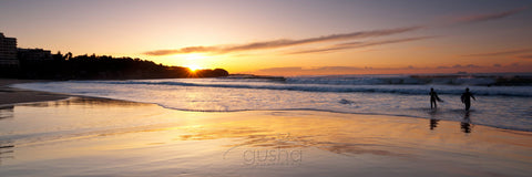 Photo of Freshwater Beach SYD2658 - Gusha