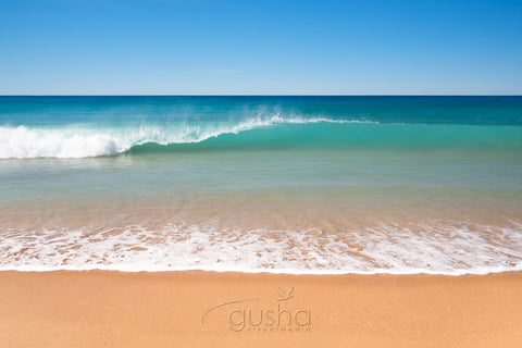 Photo of Collaroy Beach SYD2673 - Gusha