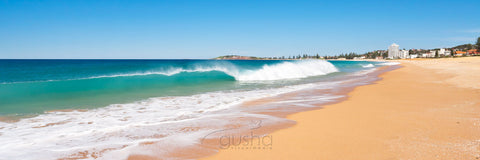 Photo of Collaroy Beach SYD2674 - Gusha