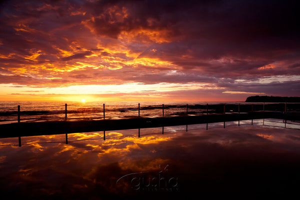 Photo of Collaroy Beach SYD2684 - Gusha