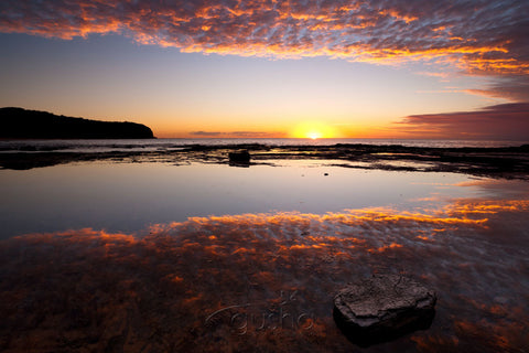 Photo of Turimetta Sunrise SYD2715 - Gusha