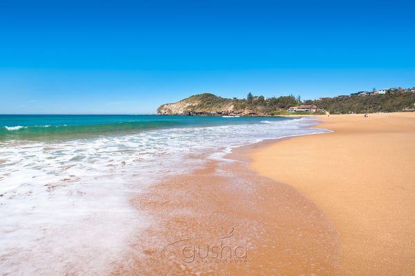 Photo of Warriewood Beach SYD2722 - Gusha