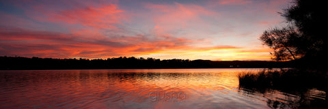 Photo of Narrabeen Lake SYD2922 - Gusha