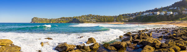 Photo of Whale Beach SYD2932 - Gusha