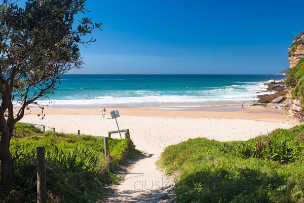 Photo of Freshwater Beach SYD2969 - Gusha