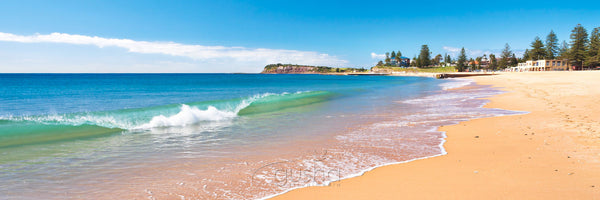 Photo of Collaroy Beach SYD3050 - Gusha
