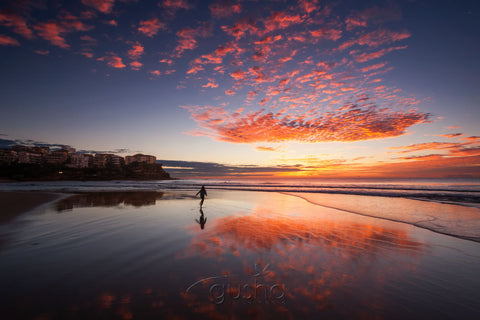 Photo of Queenscliff Beach SYD3070 - Gusha