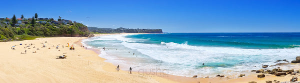 Photo of Warriewood Beach SYD3108 - Gusha