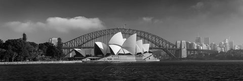 Photo of Sydney Harbour SYD3171 - Gusha