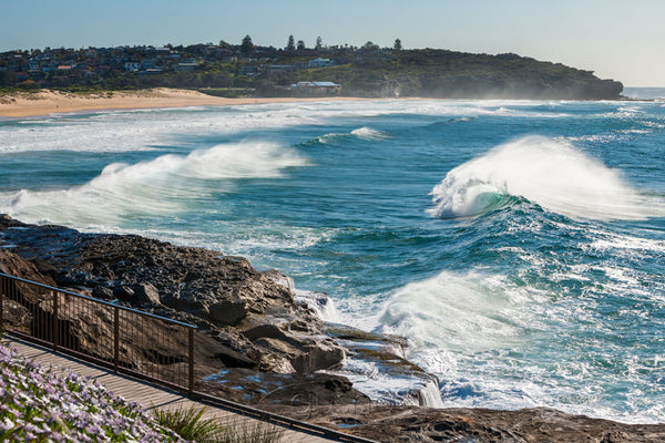 Photo of Curl Curl Beach SYD3213 - Gusha