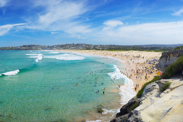 Photo of Curl Curl Beach SYD3227 - Gusha