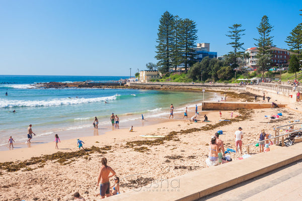 Photo of Dee Why Beach SYD3254 - Gusha
