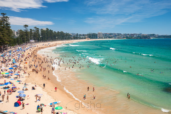 Manly Beach SYD3327