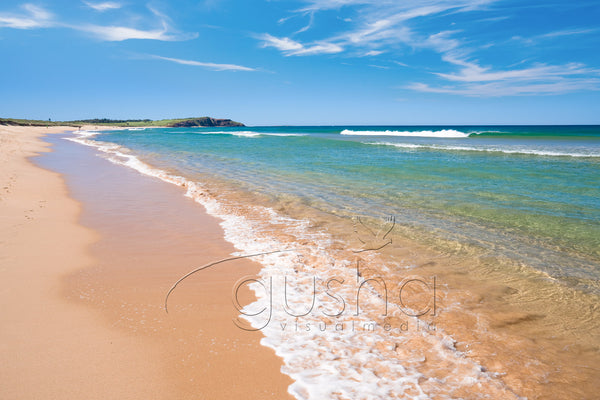 Dee Why Beach SYD3467