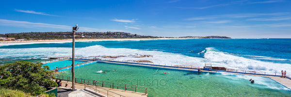 A photo of Dee Why Point overlooking the pool towards Long Reef headland on the horizon.