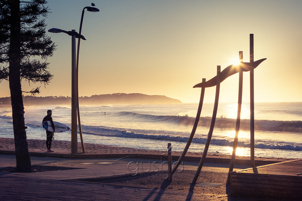 Captured at sunrise this is a photo of a surfer standing at the shoreline surveying the surf at Dee Why Beach in Sydney, Australia.