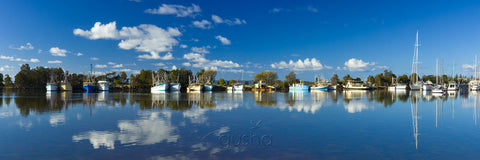 Photo of Yamba Bay YA2424 - Gusha