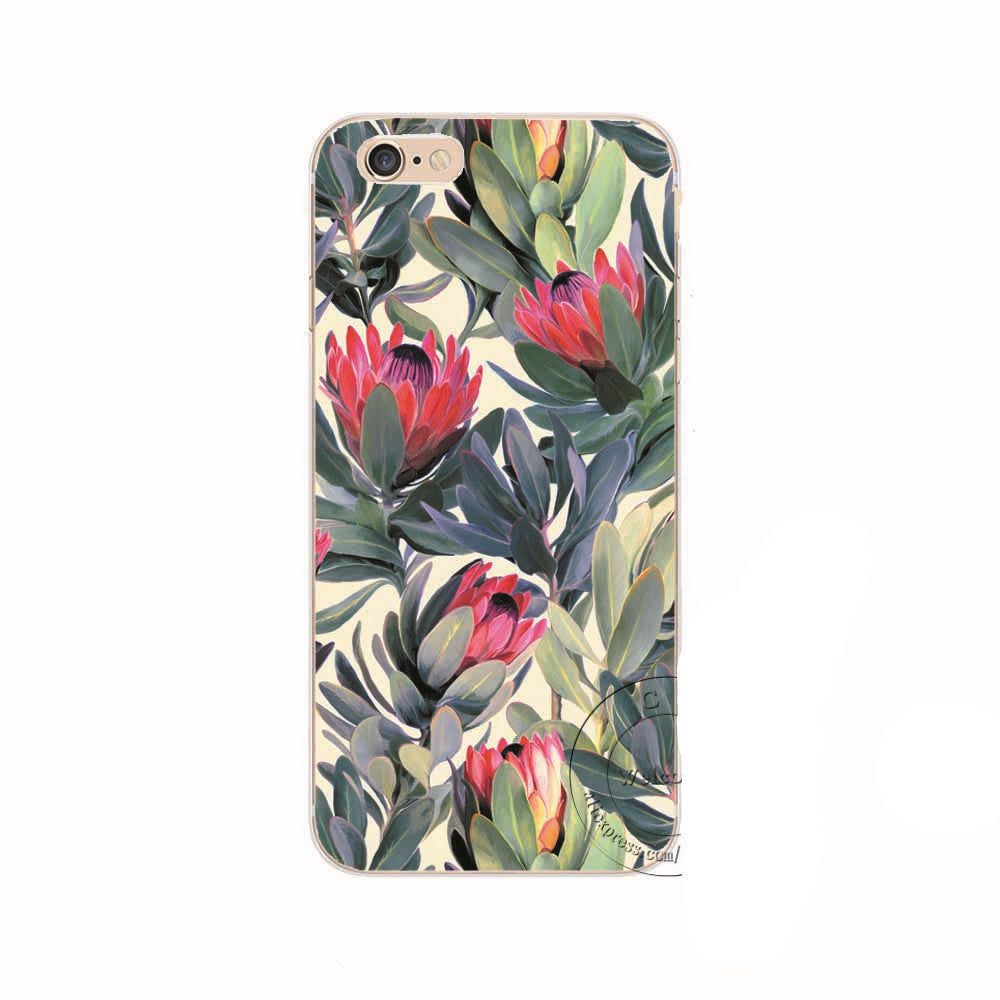 Hawaiian Protea iPhone  5 5S, 5C, 6 6S, 6s Plus Back Case Cover