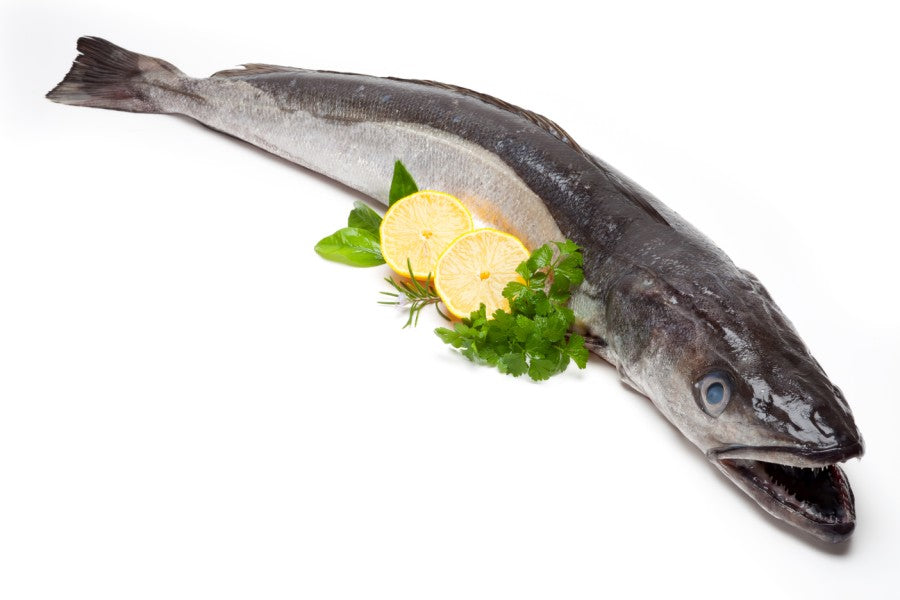 What is Hake?  Some facts and recipes