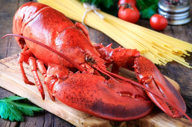 Ideal Meals for lovers on Valentine's Day: Lobster