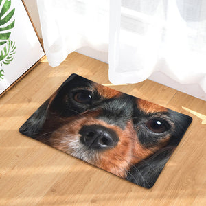 Black And Tan Cavalier King Charles Spaniel Door Mat