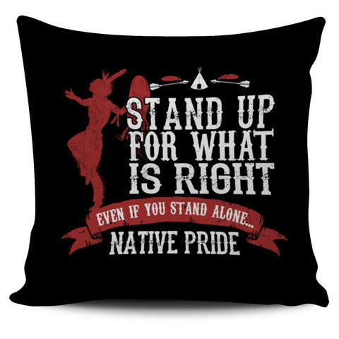 NATIVE AMERICAN  PILLOWSFamilyloves