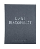 Karl Blossfeldt: Artforms in Nature