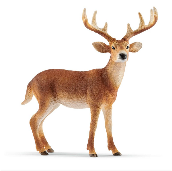 SCHLEICH | White Tailed Buck