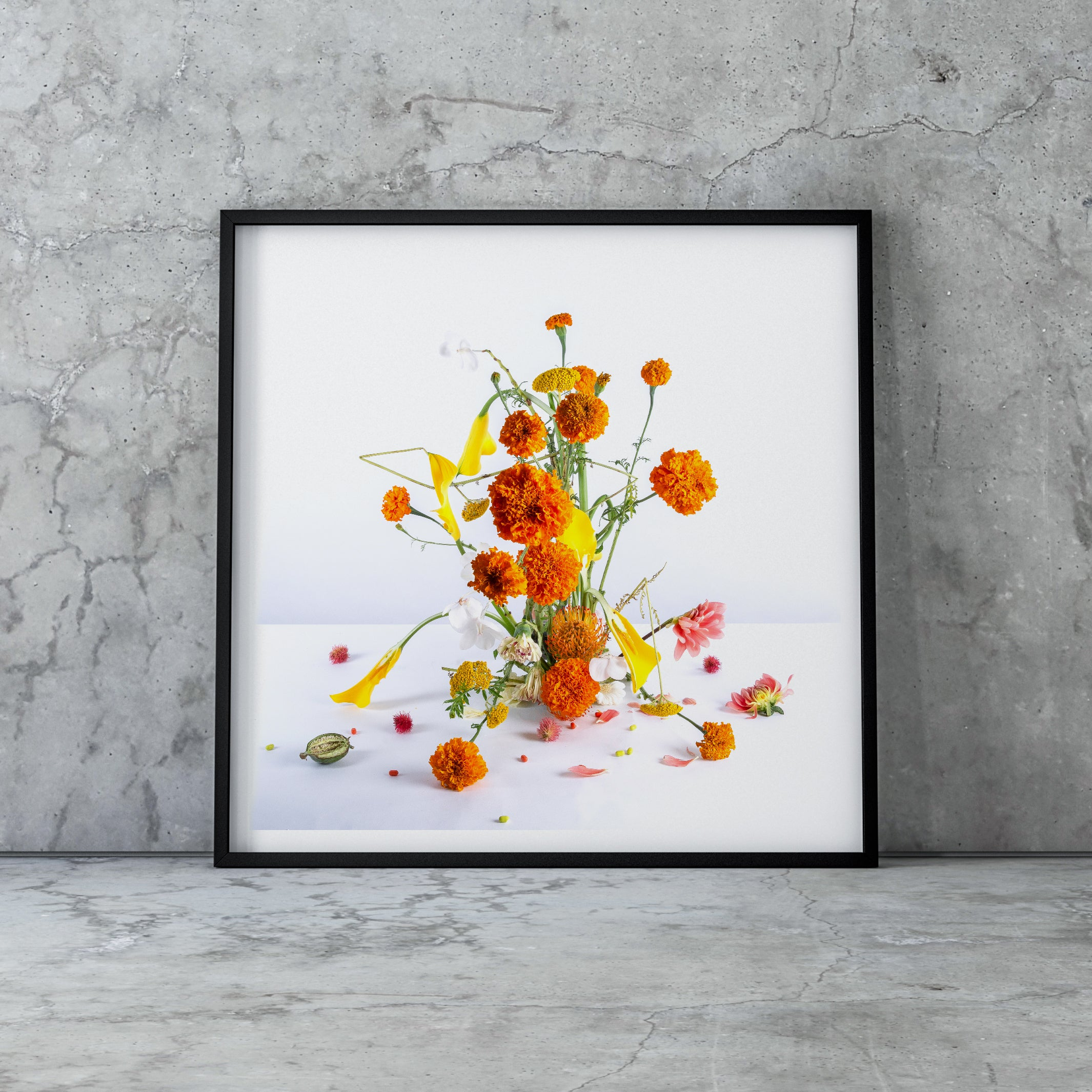 MARIGOLD LIMITED EDITION LARGE PRINT