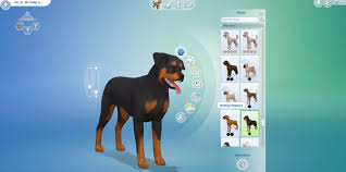 The Sims 4 Cats & Dogs - Download - Screenshot 3