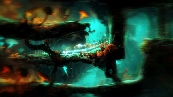 Ori and the Blind Forest Definitive Ed | PC Game | Steam Key | Screenshot 3
