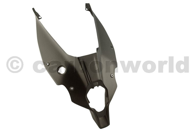 MATTE CARBON UNDERTAIL PANEL FOR DUCATI PANIGALE V4 BY CARBONWORLD