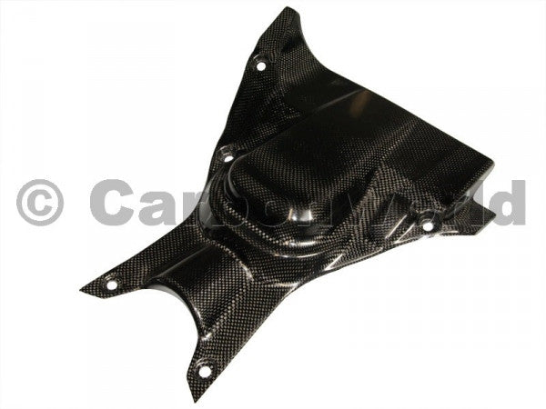 CARBON UNDERTAIL HEAT FOR DUCATI DIAVEL BY CARBONWORLD - DennisPowerSport - 1
