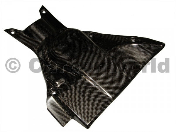 CARBON UNDERTAIL HEAT FOR DUCATI DIAVEL BY CARBONWORLD - DennisPowerSport - 3