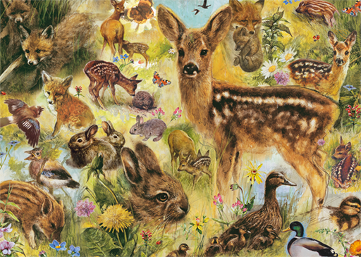 Young Wildlife 1000 Piece Jigsaw Puzzle - All Jigsaw Puzzles